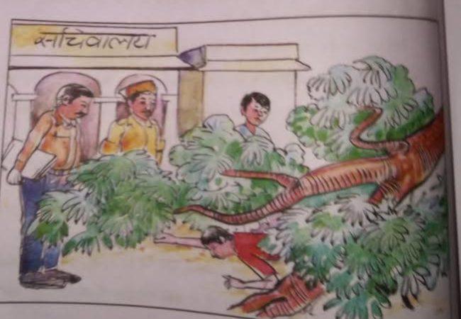 جامن کا پیڑ